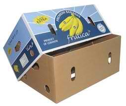 fuit box1