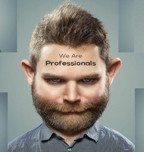 Professionals Designer